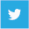 twitter-flat